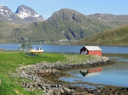 Cottage in Lofoten