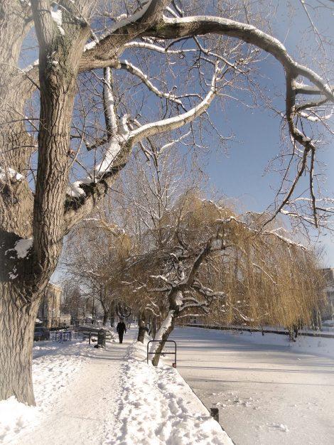 Grand Canal, frozen