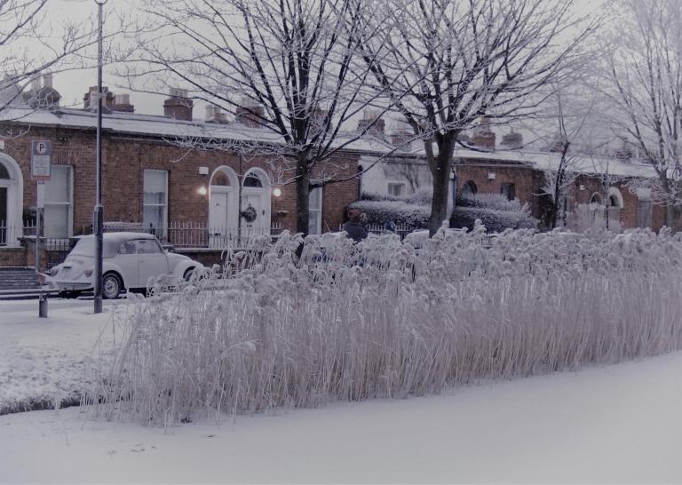 Final 2 December 2010 278 (2)
