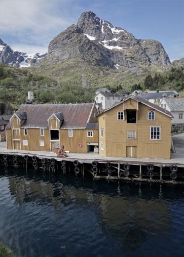 Nutsfjord