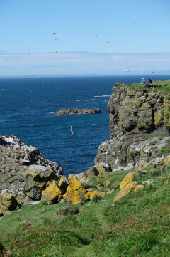 Isle of Lunga