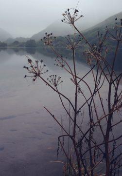 Lake Glanmore, Kerry (Beara)