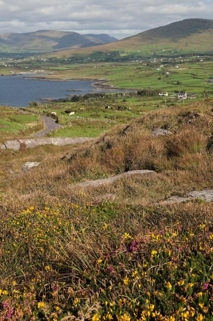 Beara Peninsula, West Cork