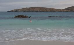 Cleggan area, Connemara, swim